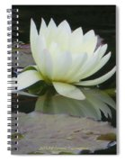Peace And Enlightment Spiral Notebook