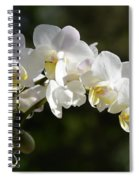 Peace Love Happiness 1 Spiral Notebook