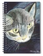 Peace The Cat Spiral Notebook