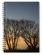 Peaceful Blues And Golds  Spiral Notebook