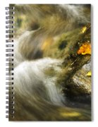 Peaceful Creek Spiral Notebook