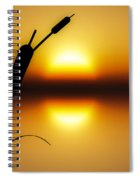 Peaceful Dawn Spiral Notebook