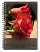 Peaceful Evening Spiral Notebook