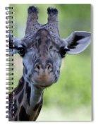 Peaceful Eyes Spiral Notebook