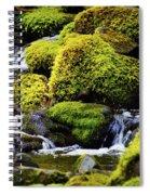 Peaceful Heart Spiral Notebook