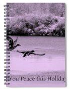 Peaceful Holidays Card - Winter Ducks Spiral Notebook