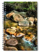 Peaceful Mountain Stream Spiral Notebook