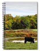 Peaceful Pastures Spiral Notebook