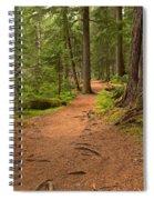 Peaceful Path To Cheakamus Lake Spiral Notebook