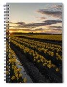 Peaceful Skagit Serenity Spiral Notebook