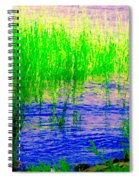 Peaceful Stream  Quebec Landscape Art Tall Grasses At The Lakeshore Waterscene Carole Spandau Spiral Notebook