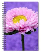 Peaceful Thoughts Spiral Notebook