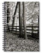 Peaceful Walk Spiral Notebook