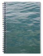 Peaceful Water Spiral Notebook