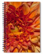 Peach Dahlia Spiral Notebook