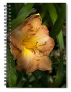 Peach Daylily Delight Spiral Notebook