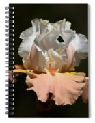 Peach Elegance Spiral Notebook