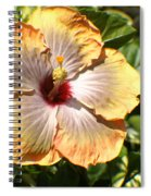 Peach Flower Spiral Notebook
