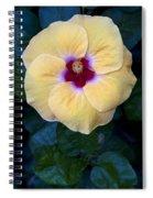 Peach Hibiscus Spiral Notebook