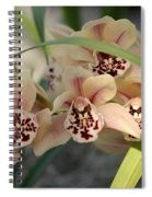 Peach Pastel Palette Spiral Notebook