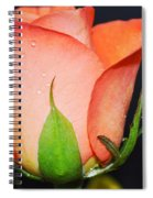 Peach Relish Spiral Notebook