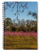 Peach Tree A Bloom Spiral Notebook