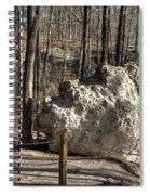 Peach Tree Rock-6 Spiral Notebook