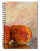 Peach Trio  Spiral Notebook