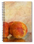 Peach Trio II Spiral Notebook