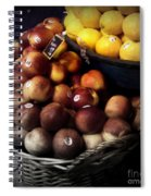 Peaches And Lemons Antique Spiral Notebook