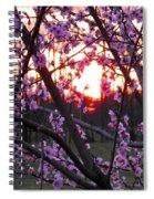 Peachy Sunset 2 Spiral Notebook