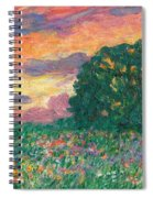 Peachy Sunset Spiral Notebook