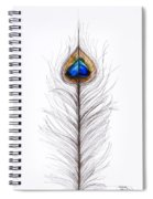 Peacock Abstract Spiral Notebook