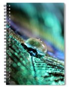 Peacock Charm Spiral Notebook