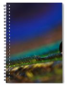 Peacock Drop Spiral Notebook