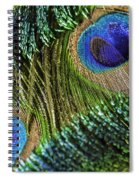 Peacock Eye And Sword Spiral Notebook