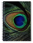 Peacock Eye Spiral Notebook