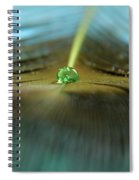 Peacock Falls Spiral Notebook
