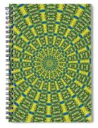 Peacock Feathers Kaleidoscope 2 Spiral Notebook
