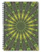Peacock Feathers Kaleidoscope 5 Spiral Notebook