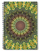 Peacock Feathers Kaleidoscope 7 Spiral Notebook