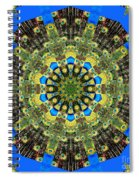 Peacock Feathers Kaleidoscope 9 Spiral Notebook