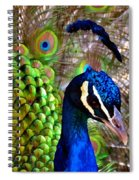 Peacock Pride Revisited Spiral Notebook