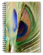 Peacocks Dance The Samba Spiral Notebook