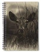 Peak A Boo Spiral Notebook