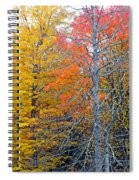 Peak And Past Foliage Spiral Notebook