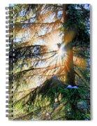 Peeking Through God's Shadow Spiral Notebook