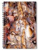 Pealing Bark Upclose Spiral Notebook