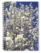 Pear Tree Blossoms In Spring Spiral Notebook