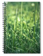 Pearl Pit Spiral Notebook